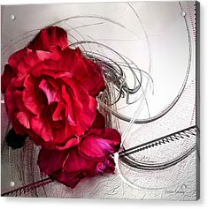 Red Roses Acrylic Print by Susan Kinney