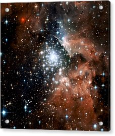 Red Smoke Star Cluster Acrylic Print by The  Vault - Jennifer Rondinelli Reilly