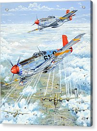 Red Tail 61 Acrylic Print by Charles Taylor