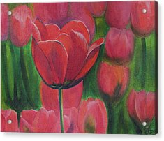 Red Tulips. Tulips In The Field. Red Flowers. Oil Paints. Acrylic Print by Elena Pavlova