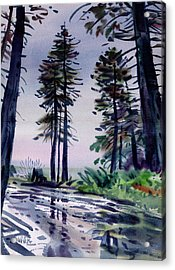 Redwood Reflections   Acrylic Print by Donald Maier