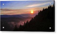 Redwood Sun Acrylic Print by Chad Dutson