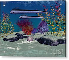 Reef Acrylic Print by Corey Ford