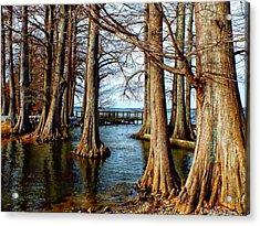 Reelfoot In Winter II Acrylic Print by Julie Dant