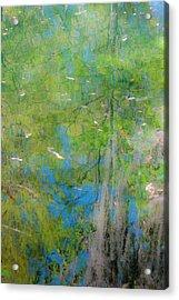 Reflecting On Abundant Humidity Acrylic Print by Sean Holmquist