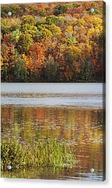 Reflection Of Autumn Colors In A Lake Acrylic Print by Susan Dykstra
