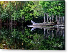 Reflection Off The Withlacoochee River Acrylic Print by Barbara Bowen