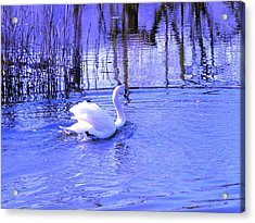 Reflections In Blue Acrylic Print by Kendall Eutemey