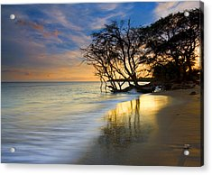 Reflections Of Paradise Acrylic Print by Mike  Dawson