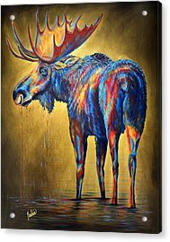 Regal Moose Acrylic Print by Teshia Art