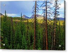 Reids Peak Acrylic Print by Chad Dutson