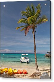 Rest Or Recreation? Acrylic Print by Charles Kozierok