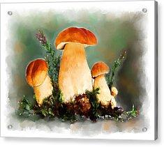 Restaurant Menu Illustration Acrylic Print by Michael Greenaway