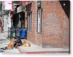 Resting On The Corner Acrylic Print by Rob Hans