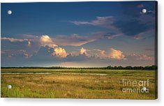 Restless Land Acrylic Print by Marvin Spates