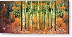Returning The Lost Autumn Acrylic Print by Tara Turner