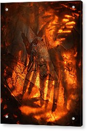 Revelation Acrylic Print by Sami Tiainen