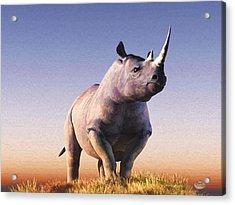 Rhino Acrylic Print by Daniel Eskridge