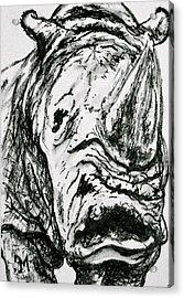Rhino Acrylic Print by Pete Maier