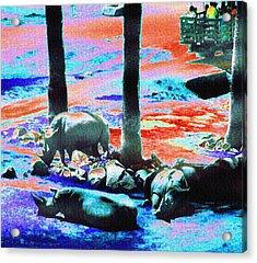 Rhinos Having A Picnic Acrylic Print by Abstract Angel Artist Stephen K