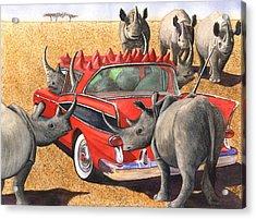 Rhinos Red Rambler Acrylic Print by Catherine G McElroy
