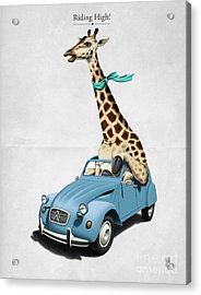 Riding High Acrylic Print by Rob Snow