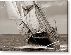 Riding The Wind -sepia Acrylic Print by Robert Lacy