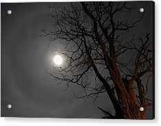 Ring Around Moon Acrylic Print by Alan Lenk