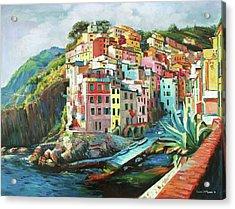 Riomaggiore Italy Acrylic Print by Conor McGuire