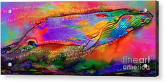 Rise Of The Rainbow Whale Acrylic Print by Nick Gustafson