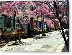 Rittenhouse Square Neighborhood Acrylic Print by Andrew Dinh