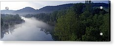 River Flowing In A Forest Acrylic Print by Panoramic Images