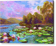 The Wonder Of Water Lilies Acrylic Print by Jane Small