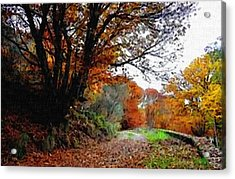 Road Through An Autumn Forest H B Acrylic Print by Gert J Rheeders