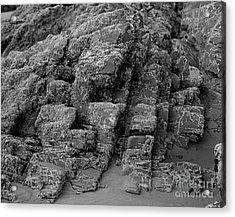 Rock Detail Oregon Coast Acrylic Print by Arni Katz