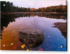 Rock In A Pond Acadia Natioanl Park Maine Acrylic Print by George Oze