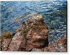Rock With Face And Lichen Acrylic Print by Bonnie Follett