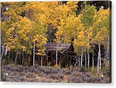 Rocky Mountain Homestead Acrylic Print by Cynthia  Cox Cottam