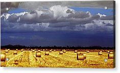 Rolling On Acrylic Print by Holly Kempe