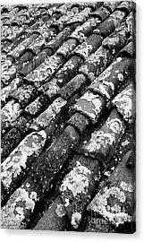 Roof Tiles Acrylic Print by Gaspar Avila