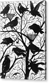 Rooks Acrylic Print by Nat Morley