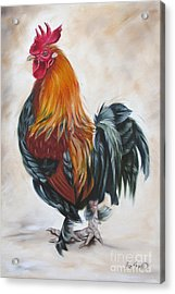 Rooster 19 Of 10 Acrylic Print by Ilse Kleyn