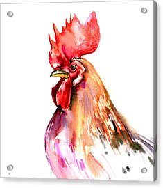 Rooster Portrait Acrylic Print by Suren Nersisyan