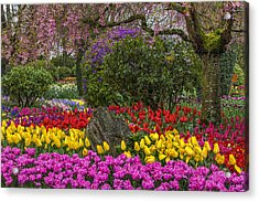 Roozengaarde Flower Garden Acrylic Print by Mark Kiver