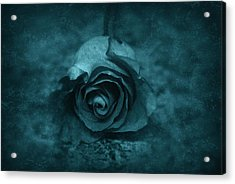 Rose - Green Acrylic Print by Angie Tirado