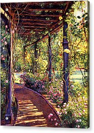 Rose Arbor Toluca Lake Acrylic Print by David Lloyd Glover