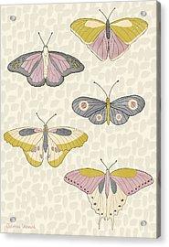 Rose Gold Butterflies Acrylic Print by Christina Steward