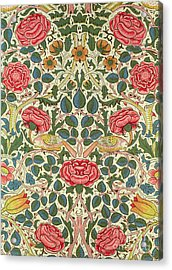 Rose Acrylic Print by William Morris