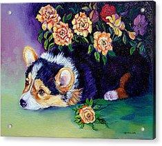Roses - Pembroke Welsh Corgi Acrylic Print by Lyn Cook