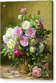 Roses  Acrylic Print by Albert Williams